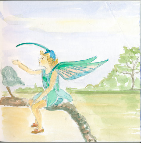 Hummingbird Fairy